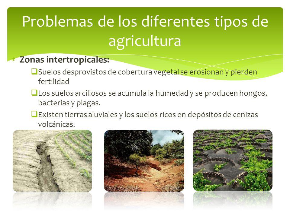 Problemas de los diferentes tipos de agricultura