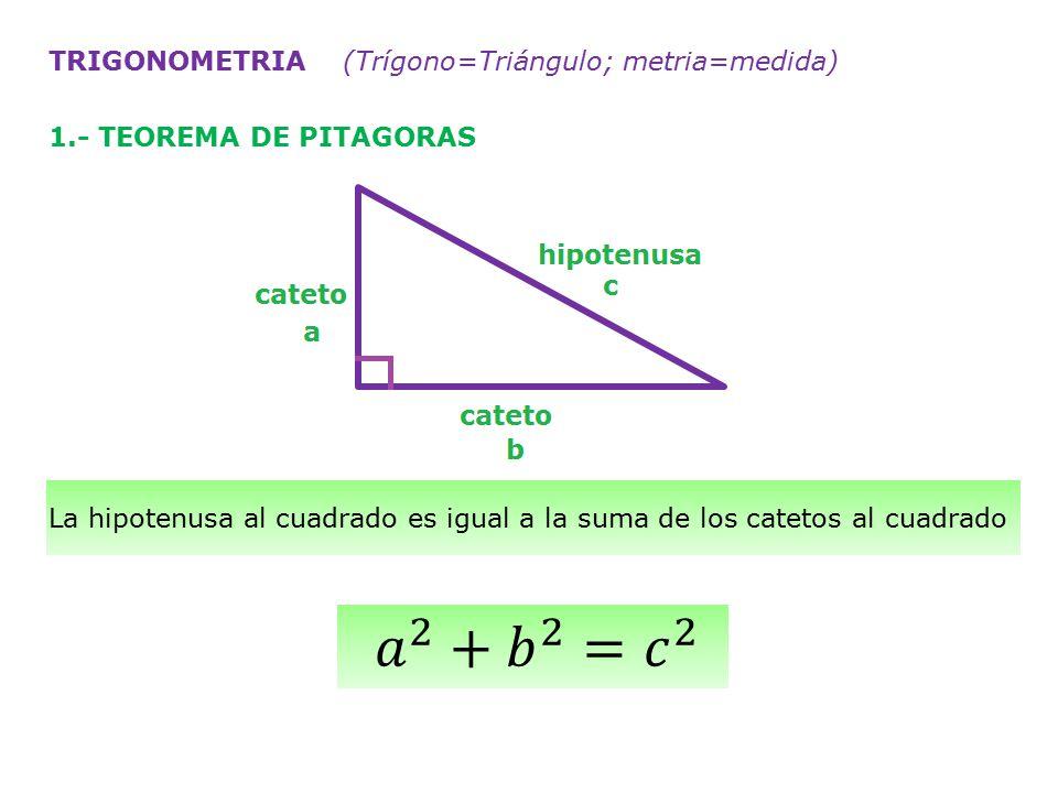 𝑎 2 + 𝑏 2 = 𝑐 2 TRIGONOMETRIA (Trígono=Triángulo; metria=medida)