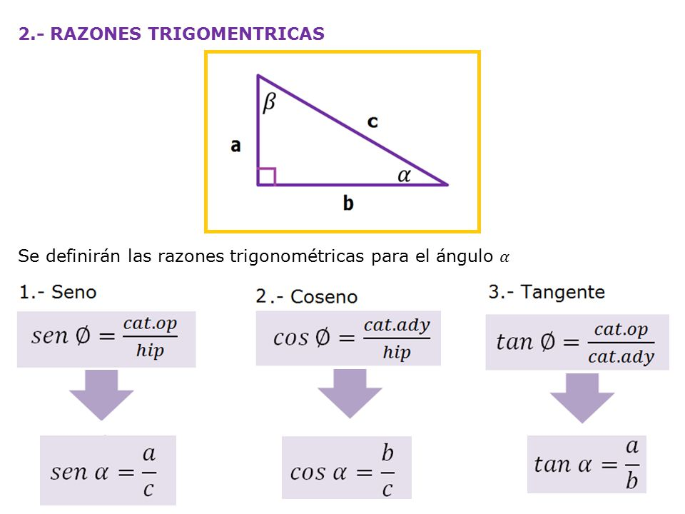 2.- RAZONES TRIGOMENTRICAS Se definirán las razones trigonométricas para el ángulo 𝛼