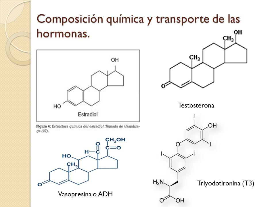 Composición química y transporte de las hormonas.