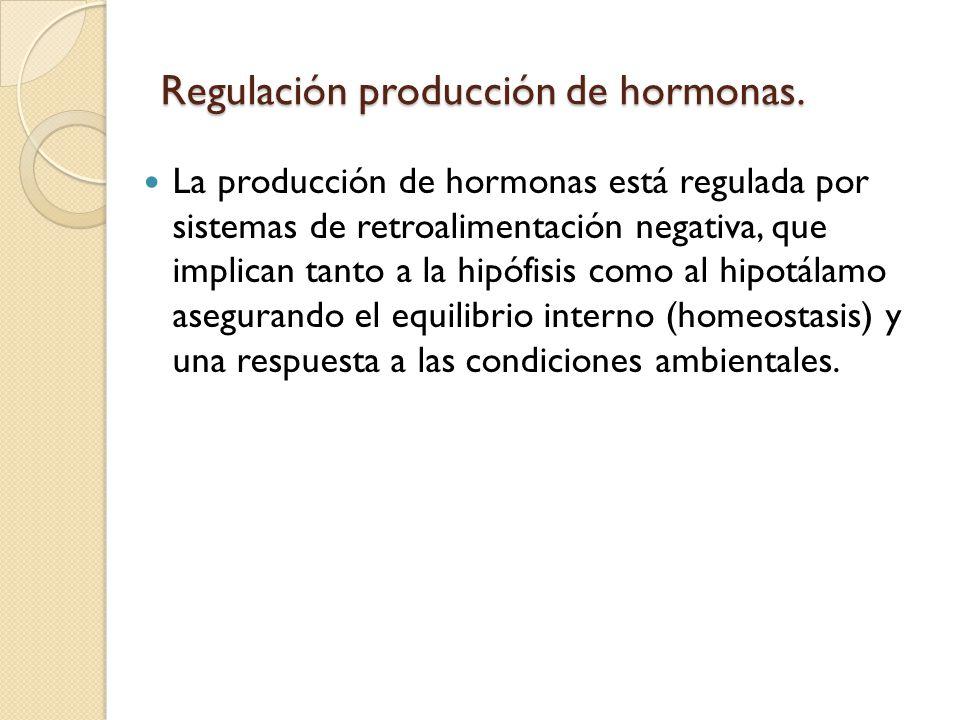 Regulación producción de hormonas.