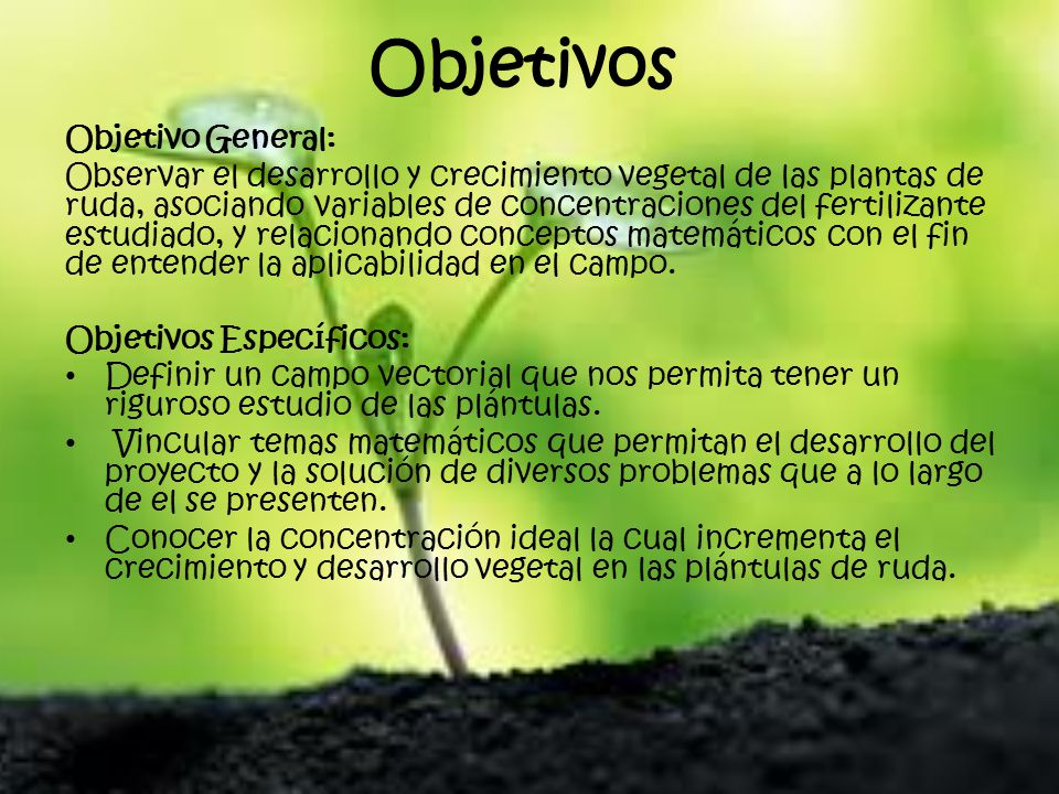 Evaluaci n al crecimiento y desarrollo vegetal en plantas for Objetivo general de un vivero