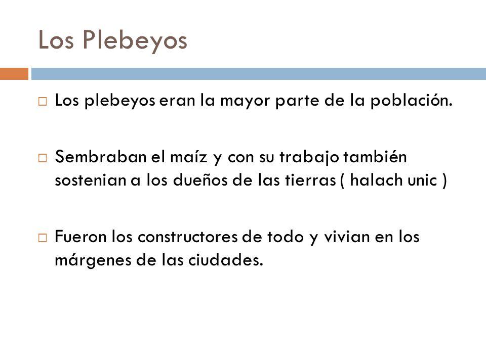 Los Plebeyos Los plebeyos eran la mayor parte de la población.