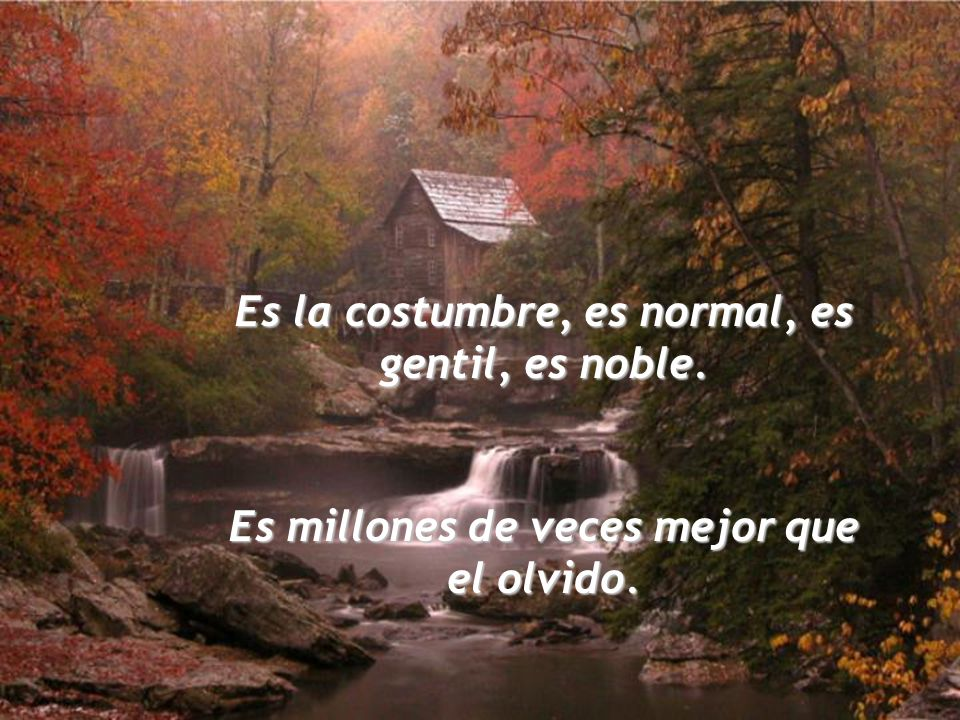 Es la costumbre, es normal, es gentil, es noble.