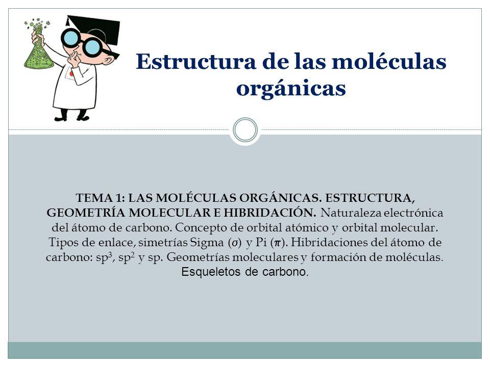 Estructura De Las Moléculas Orgánicas