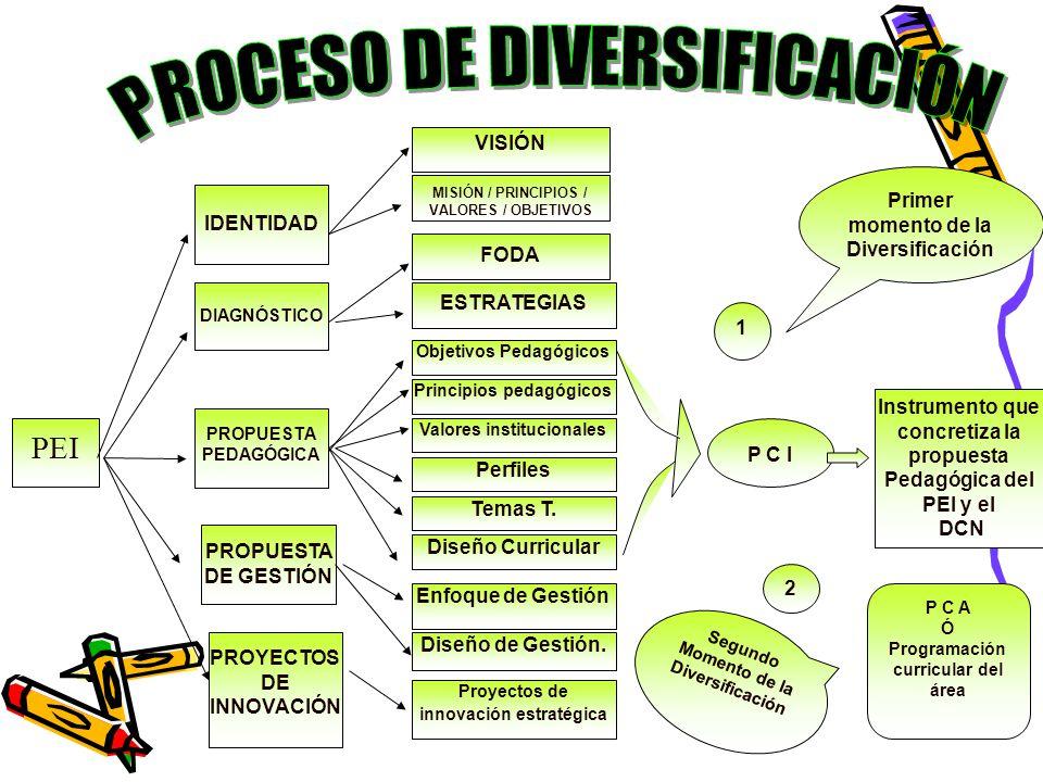 PROCESO DE DIVERSIFICACIÓN