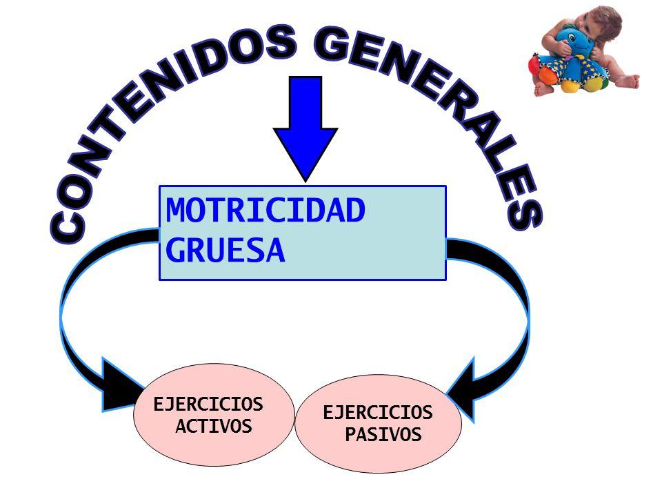 CONTENIDOS GENERALES MOTRICIDAD GRUESA EJERCICIOS ACTIVOS EJERCICIOS