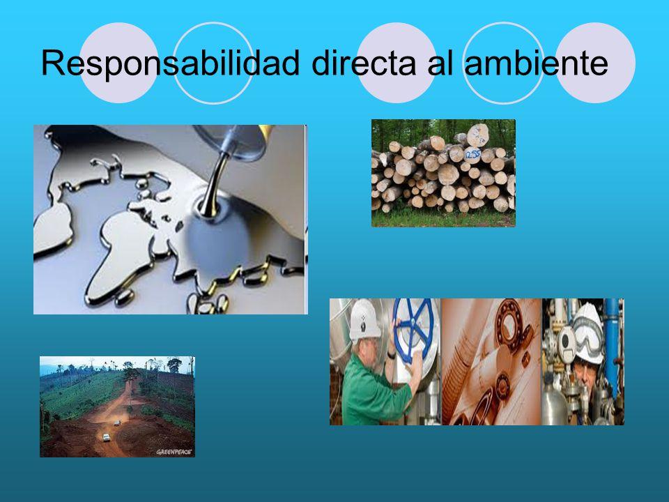 Responsabilidad directa al ambiente