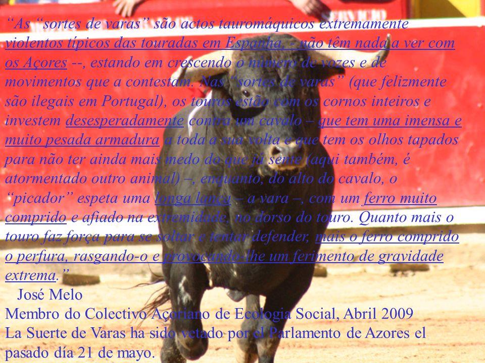 As sortes de varas são actos tauromáquicos extremamente violentos típicos das touradas em Espanha, - não têm nada a ver com os Açores --, estando em crescendo o número de vozes e de movimentos que a contestam. Nas sortes de varas (que felizmente são ilegais em Portugal), os touros estão com os cornos inteiros e investem desesperadamente contra um cavalo – que tem uma imensa e muito pesada armadura a toda a sua volta e que tem os olhos tapados para não ter ainda mais medo do que já sente (aqui também, é atormentado outro animal) –, enquanto, do alto do cavalo, o picador espeta uma longa lança – a vara –, com um ferro muito comprido e afiado na extremidade, no dorso do touro. Quanto mais o touro faz força para se soltar e tentar defender, mais o ferro comprido o perfura, rasgando-o e provocando-lhe um ferimento de gravidade extrema.