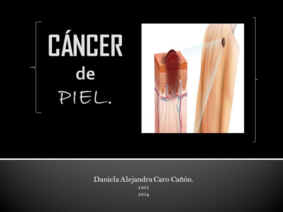 Daniela Alejandra Caro Cañón. 1102 2014