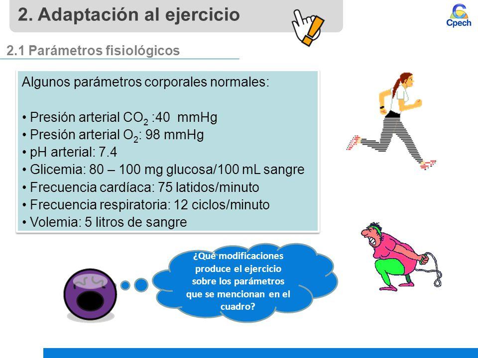 Atractivo Anatomía Del Ejercicio Sistema Urinario 40 Galería ...