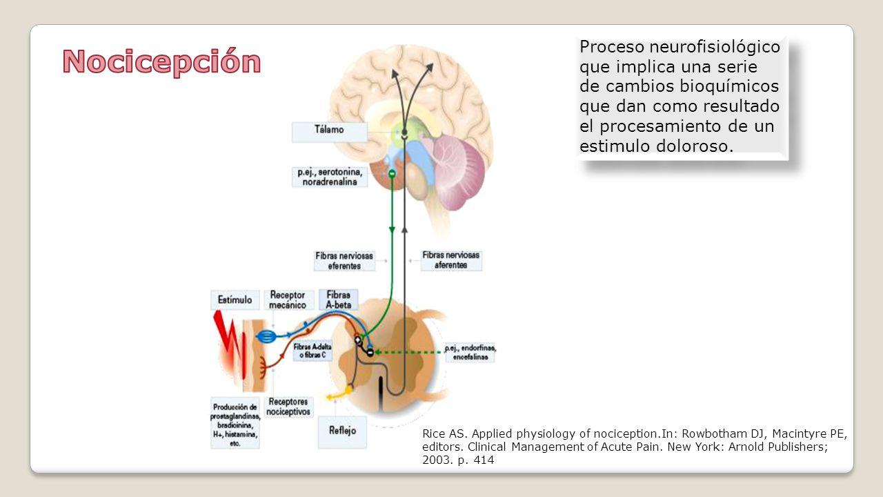 Proceso neurofisiológico que implica una serie de cambios bioquímicos que dan como resultado el procesamiento de un estimulo doloroso.