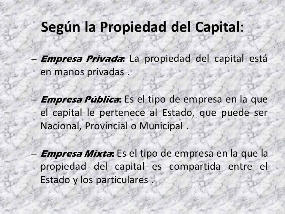 Según la Propiedad del Capital: