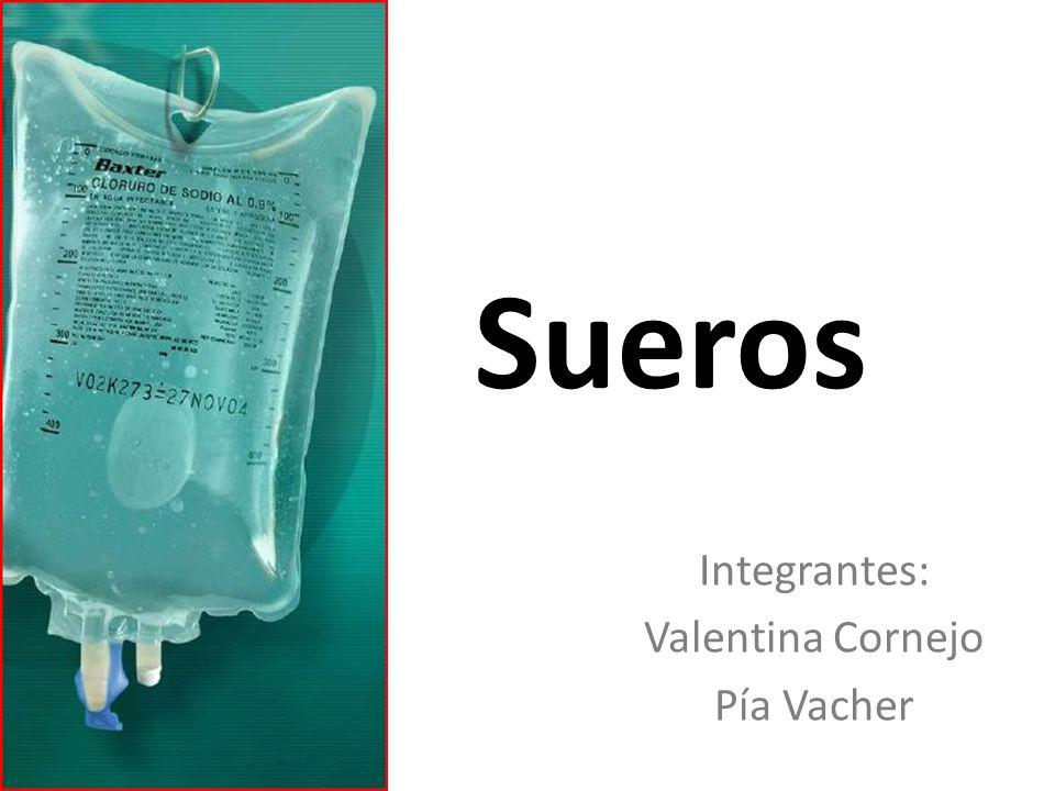 Integrantes: Valentina Cornejo Pía Vacher