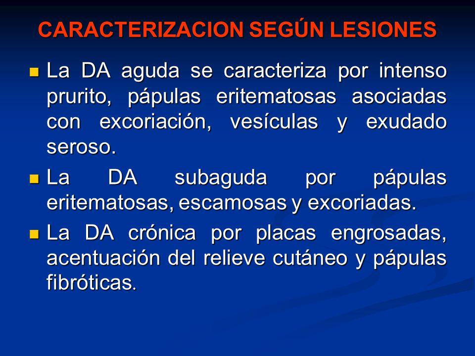 CARACTERIZACION SEGÚN LESIONES