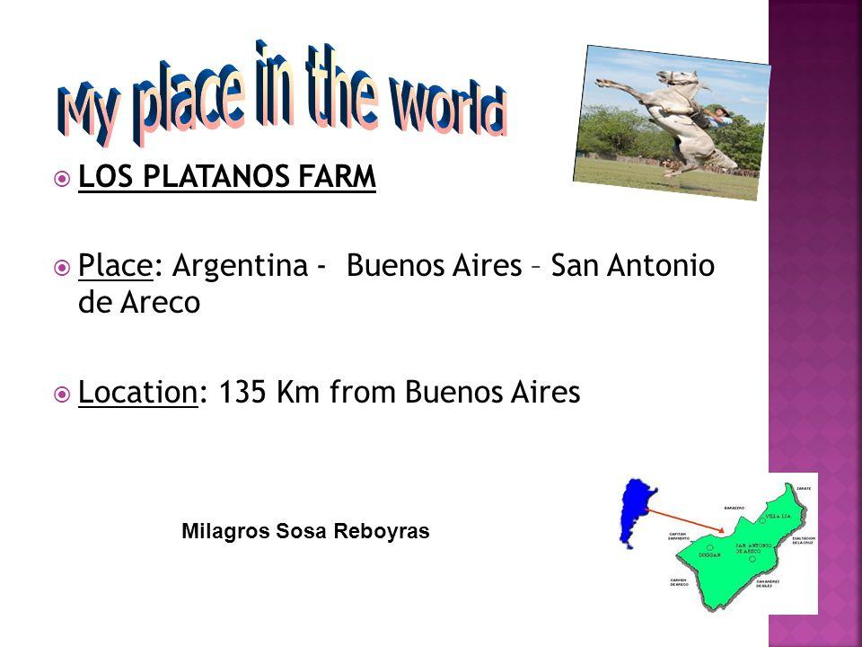 Place: Argentina - Buenos Aires – San Antonio de Areco