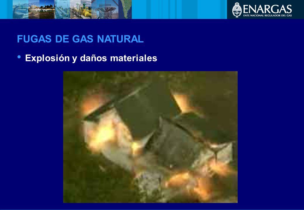 FUGAS DE GAS NATURAL Explosión y daños materiales