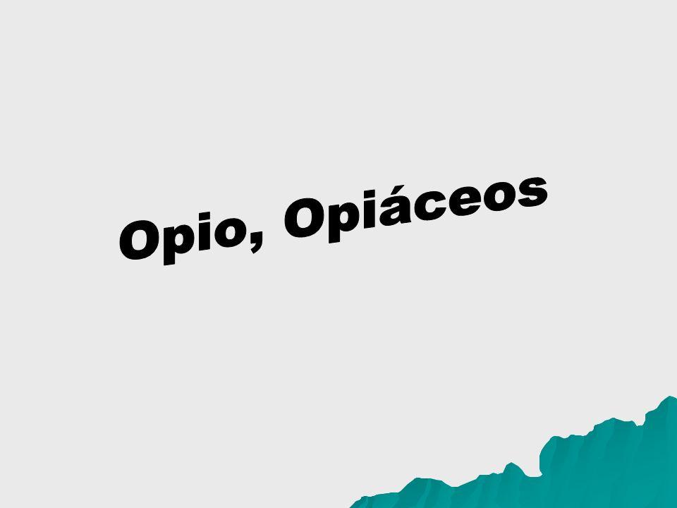 Opio, Opiáceos