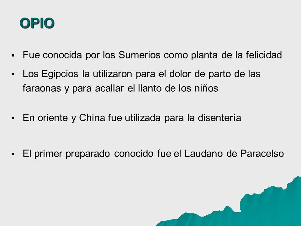 OPIO Fue conocida por los Sumerios como planta de la felicidad