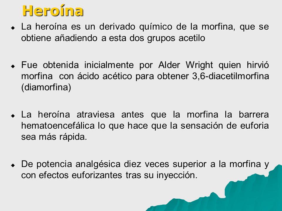 Heroína La heroína es un derivado químico de la morfina, que se obtiene añadiendo a esta dos grupos acetilo.