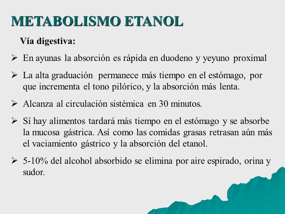 METABOLISMO ETANOL Vía digestiva: