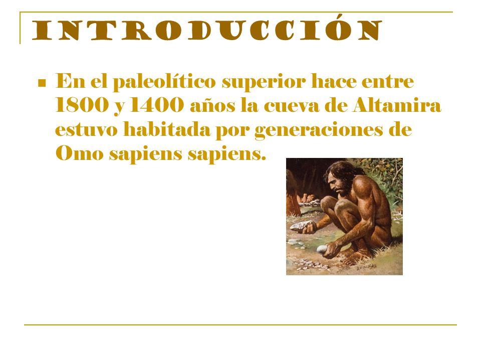 Introducción En el paleolítico superior hace entre 1800 y 1400 años la cueva de Altamira estuvo habitada por generaciones de Omo sapiens sapiens.
