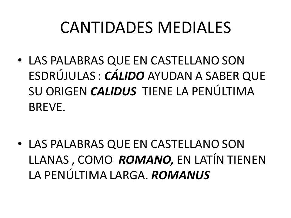 CANTIDADES MEDIALES LAS PALABRAS QUE EN CASTELLANO SON ESDRÚJULAS : CÁLIDO AYUDAN A SABER QUE SU ORIGEN CALIDUS TIENE LA PENÚLTIMA BREVE.