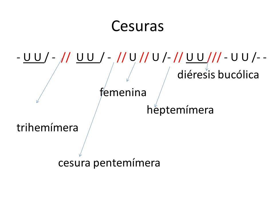 Cesuras - U U / - // U U / - // U // U /- // U U /// - U U /- - diéresis bucólica femenina heptemímera trihemímera cesura pentemímera