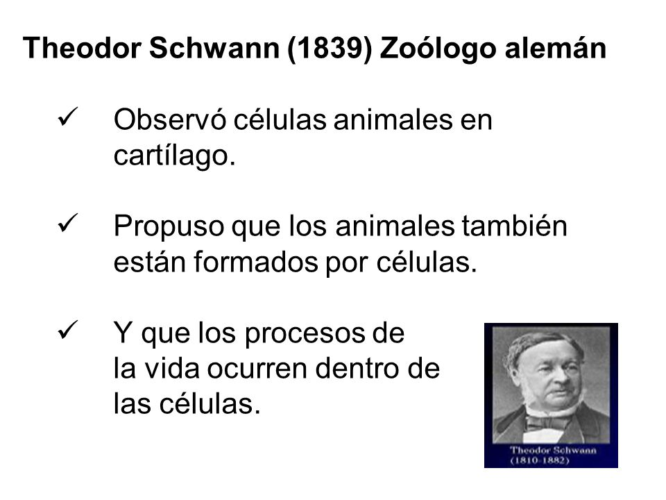theodor schwann essay 1839 german physiologist theodor schwann, after a lovely dinner with  ib  english extended essay ee online help tutors example sample 8.