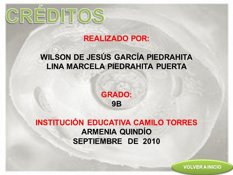 CRÉDITOS REALIZADO POR: WILSON DE JESÚS GARCÍA PIEDRAHITA