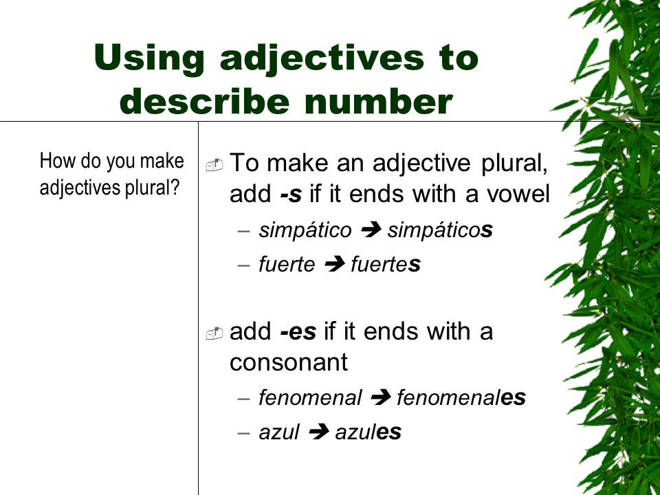 Using adjectives to describe number