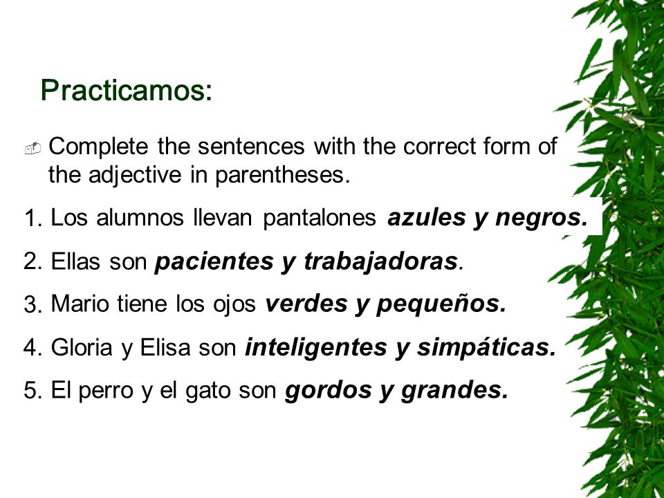 Practicamos: Complete the sentences with the correct form of the adjective in parentheses. 1. Los alumnos llevan pantalones [azul y negro(a)].