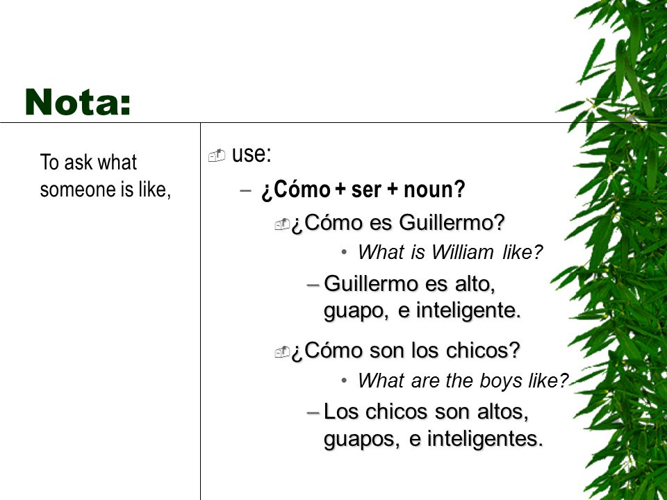 Nota: use: ¿Cómo + ser + noun To ask what someone is like,