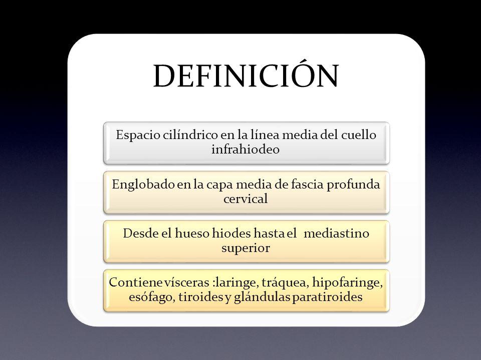 Perfecto Definición Anatomía Visceral Fotos - Imágenes de Anatomía ...