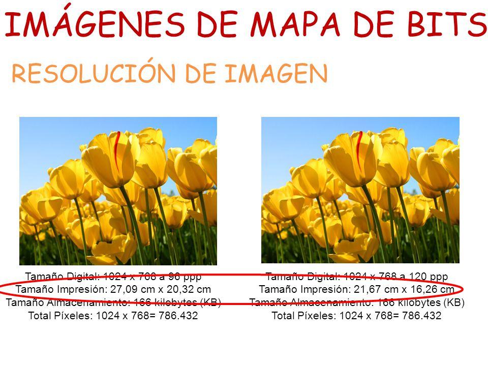 Clase 1 Im 225 Genes De Mapa De Bits Caracter 237 Sticas Y