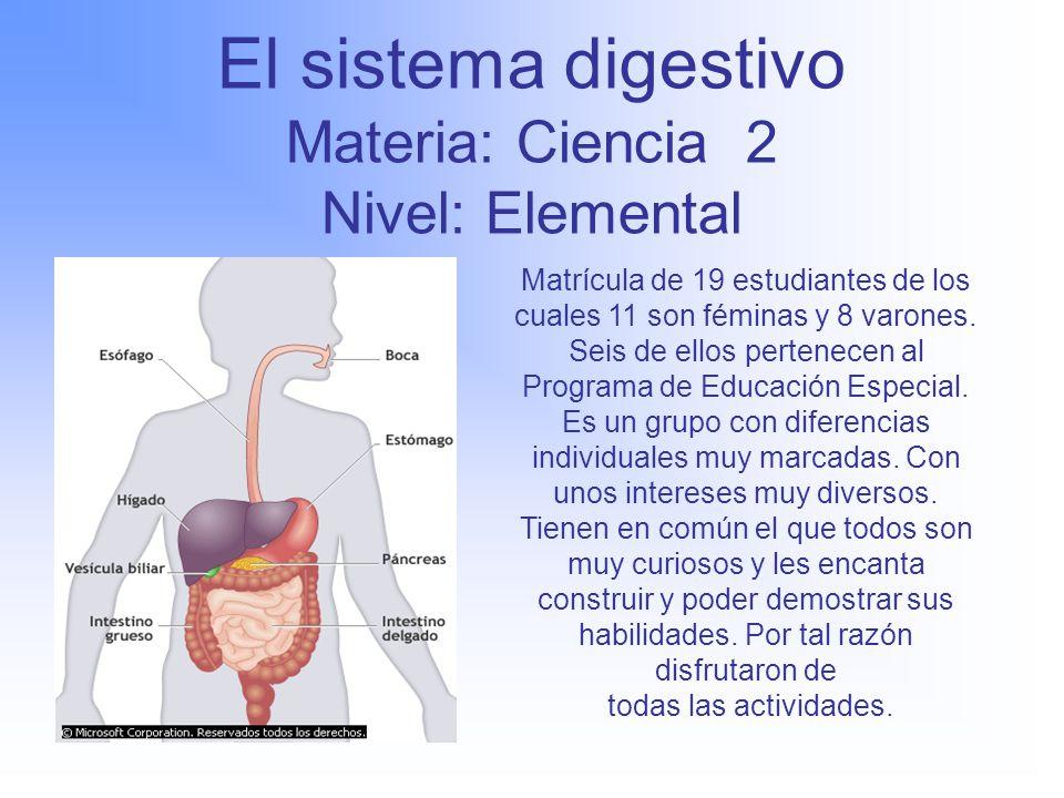 Único Foto Marcada Del Sistema Digestivo Motivo - Anatomía de Las ...