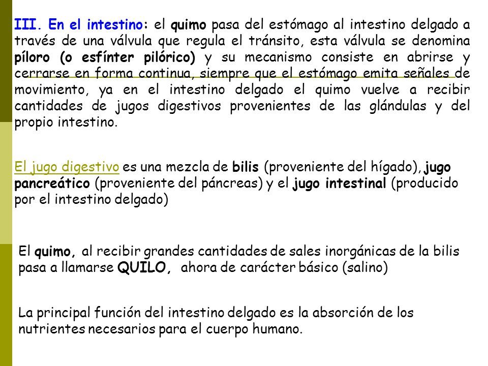 Aparatos Introducción: Un órgano es la parte de un animal o planta ...