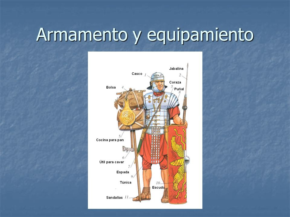 Armamento y equipamiento