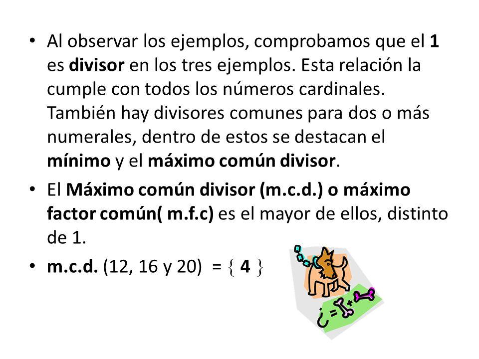 Al observar los ejemplos, comprobamos que el 1 es divisor en los tres ejemplos. Esta relación la cumple con todos los números cardinales. También hay divisores comunes para dos o más numerales, dentro de estos se destacan el mínimo y el máximo común divisor.