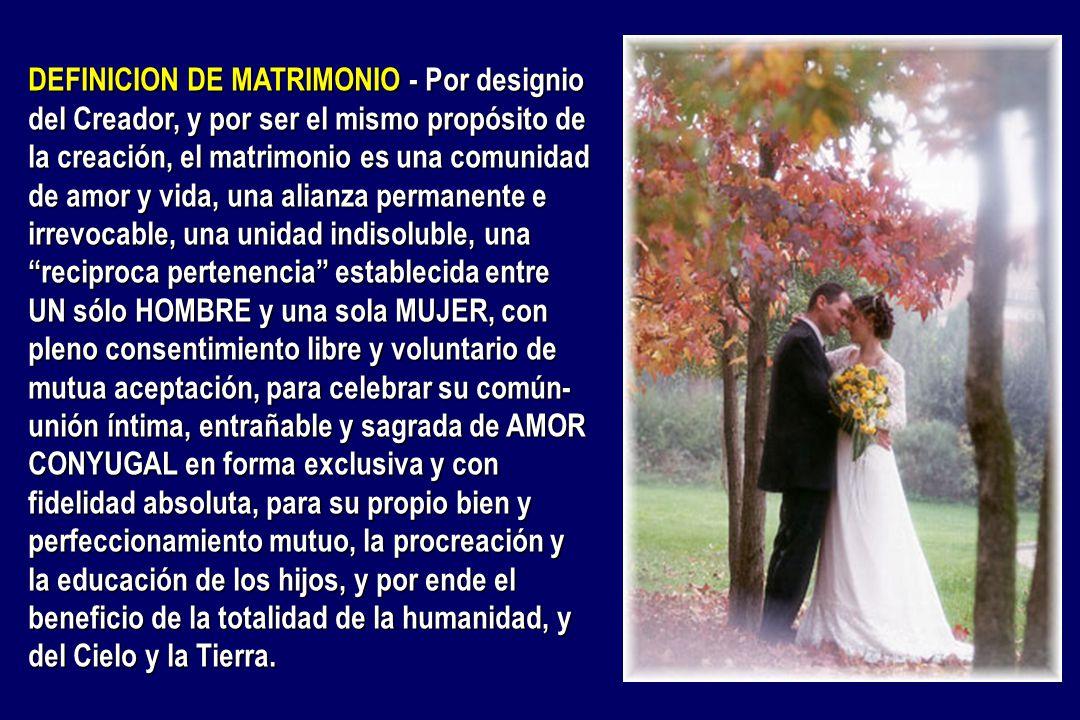 Matrimonio Definicion : La promesa de familia ppt descargar