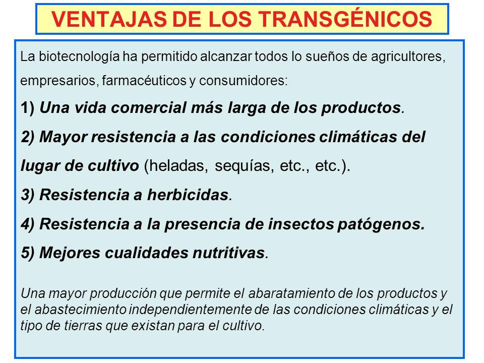 Alimentos transg nicos inocuidad o da o ppt descargar - Ventajas alimentos transgenicos ...