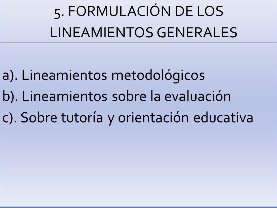5. FORMULACIÓN DE LOS LINEAMIENTOS GENERALES