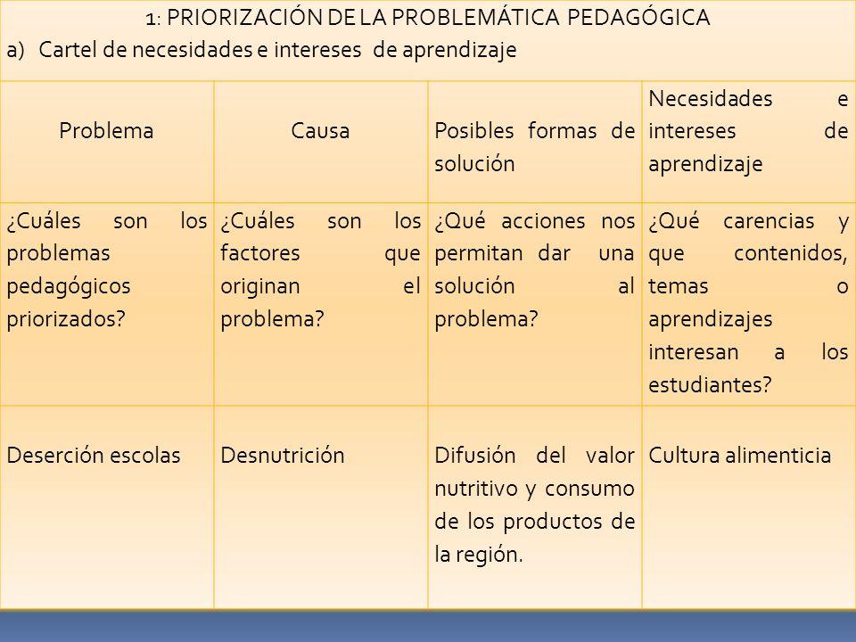 1: PRIORIZACIÓN DE LA PROBLEMÁTICA PEDAGÓGICA