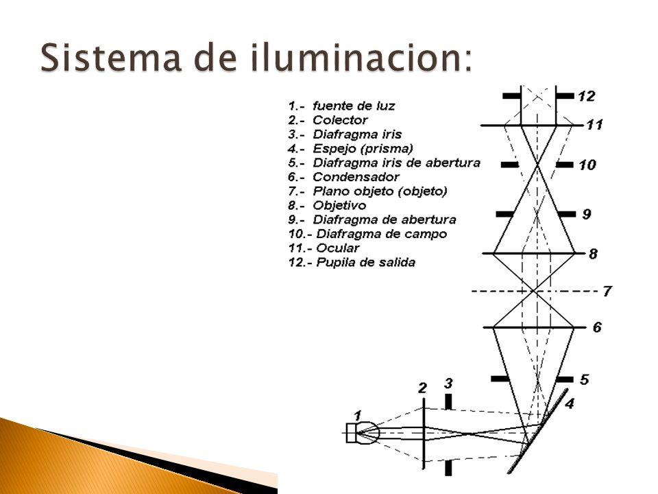 Sistemas de iluminacion sistemas de iluminacion microscopio compuesto ppt video - Sistemas de iluminacion interior ...