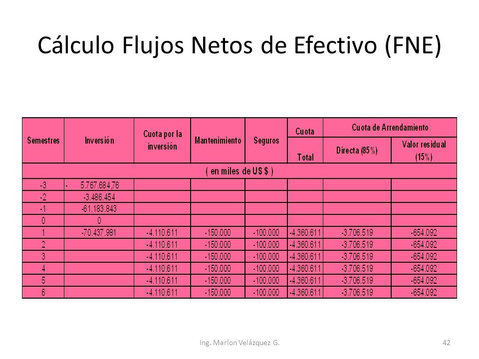 Cálculo Flujos Netos de Efectivo (FNE)