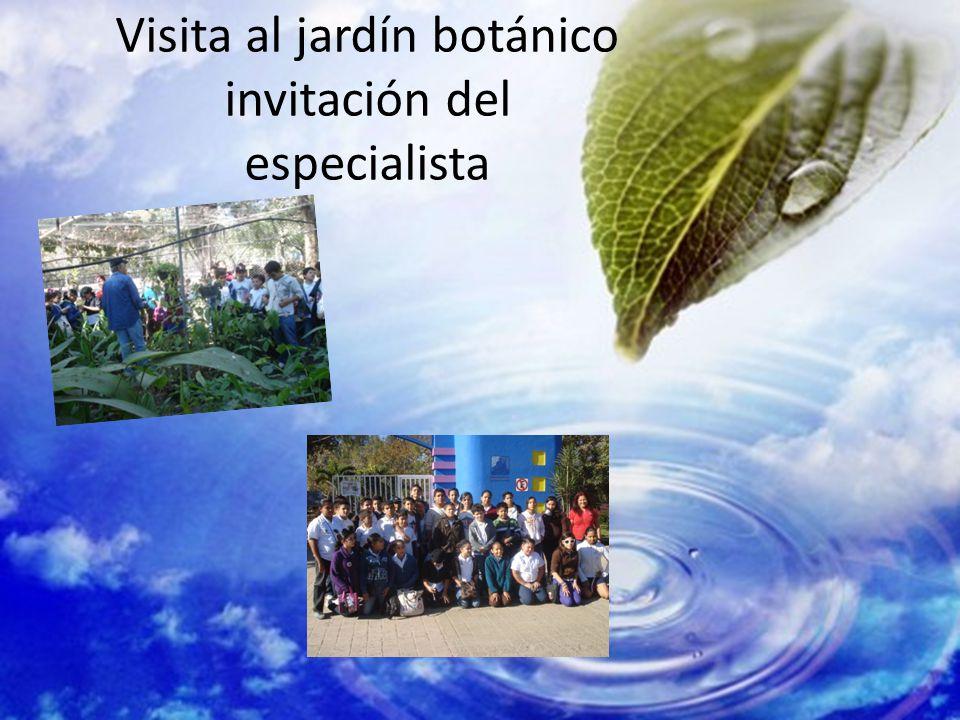 Visita al jardín botánico invitación del especialista