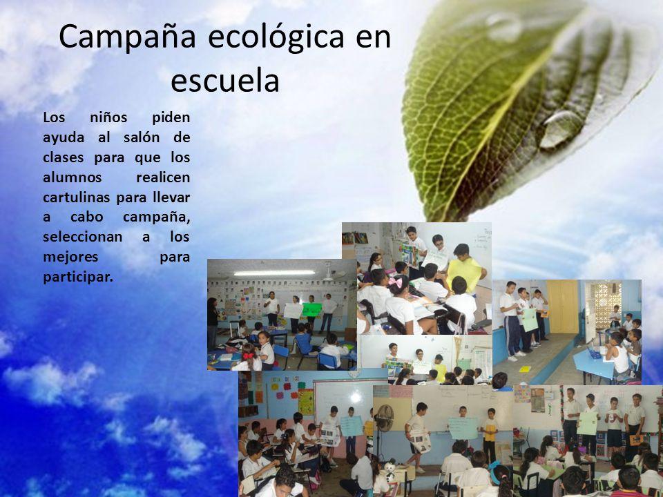 Campaña ecológica en escuela
