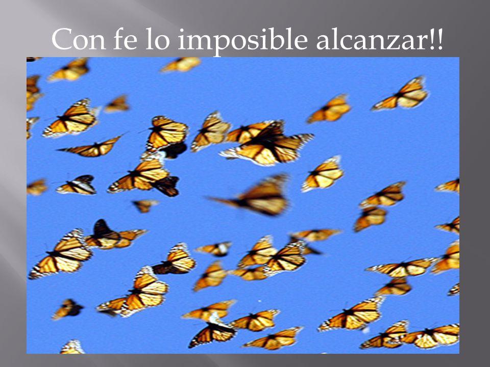 Con fe lo imposible alcanzar!!