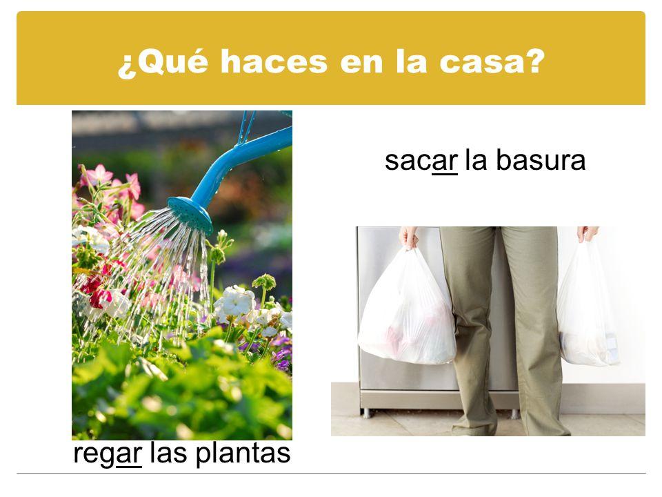 ¿Qué haces en la casa sacar la basura regar las plantas