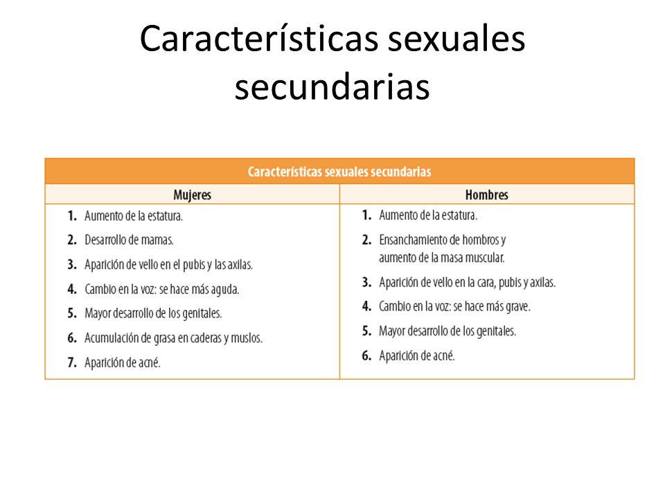 Características sexuales secundarias